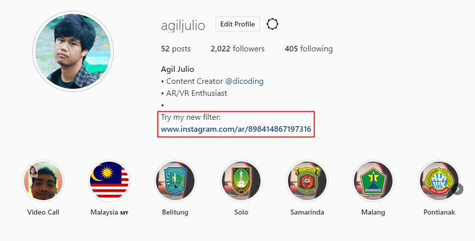 Bio Instagram filter
