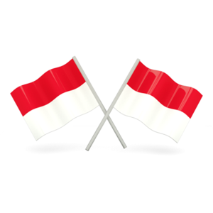 100% Indonesia (iOS Challenge)